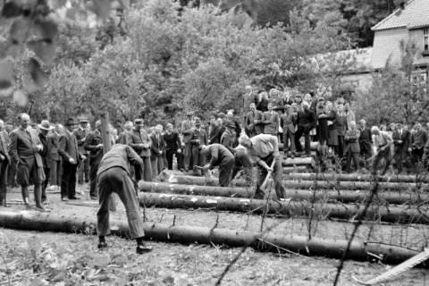 ARH NL Dierssen 0152/0004, Forstarbeiter - Betriebsfeier, 1949