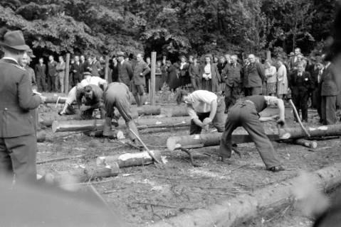 ARH NL Dierssen 0152/0006, Forstarbeiter - Betriebsfeier, 1949