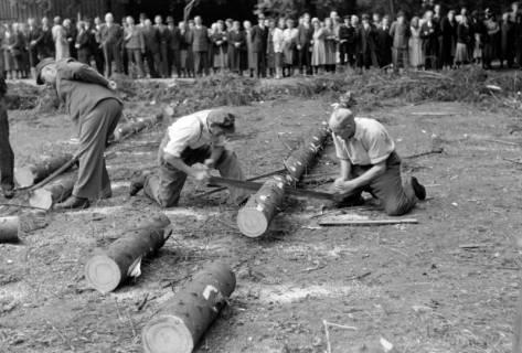 ARH NL Dierssen 0152/0007, Forstarbeiter - Betriebsfeier, 1949