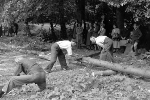 ARH NL Dierssen 0152/0009, Forstarbeiter - Betriebsfeier, 1949