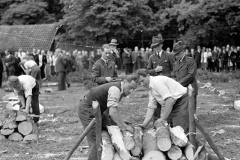 ARH NL Dierssen 0152/0013, Forstarbeiter - Betriebsfeier, 1949