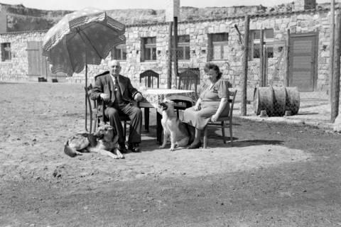 ARH NL Dierssen 0157/0002, Familie Graf, 1949