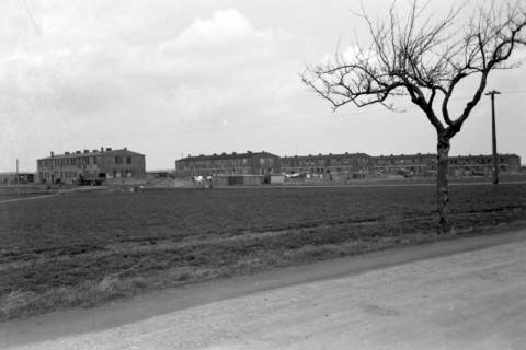 ARH NL Dierssen 0159/0019, Finnenhäuser, 1949