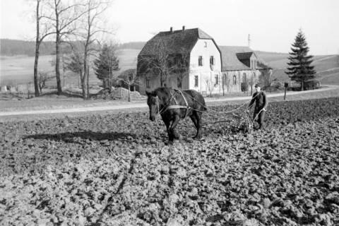 ARH NL Dierssen 0162/0007, Frühjahrs-Feldbestellung, 1949