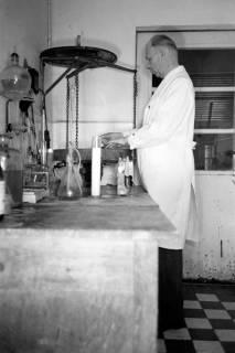 ARH NL Dierssen 0163/0007, Milchprüfer, 1949