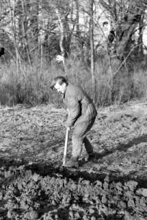 ARH NL Dierssen 0164/0020, Herr Barreuschee beim Graben, 1949
