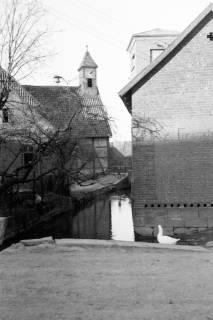 ARH NL Dierssen 0164/0022, Dorfbach, 1949