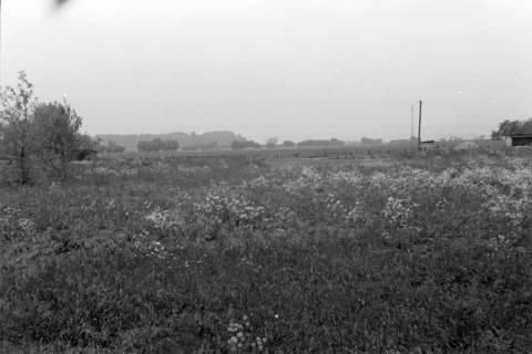 ARH NL Dierssen 0169/0003, Aufnahmen für Kripo - Mordtatort, 1949