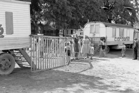 ARH NL Dierssen 0169/0013, Zirkus, 1949