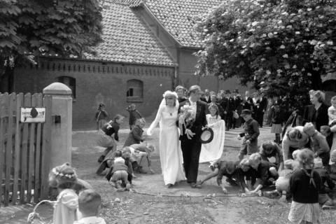 ARH NL Dierssen 0170/0005, Hochzeit Diedrichs, 1949