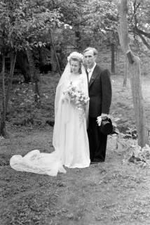 ARH NL Dierssen 0170/0011, Hochzeit Diedrichs, 1949