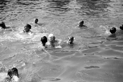 ARH NL Dierssen 0174/0005, Schwimmfest, 1949