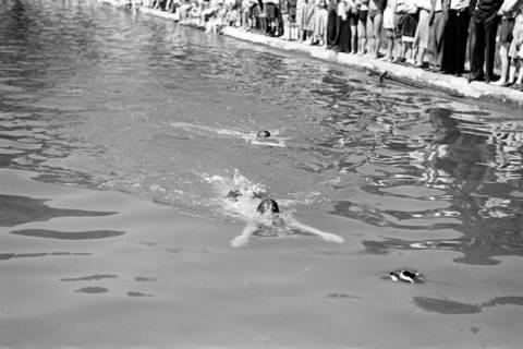 ARH NL Dierssen 0174/0022, Schwimmfest, 1949