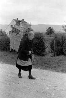 ARH NL Dierssen 0175/0025, Kiepenfrau mit Erdbeeren, 1949