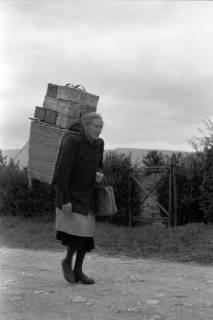 ARH NL Dierssen 0175/0026, Kiepenfrau mit Erdbeeren, 1949