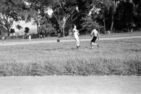 ARH NL Dierssen 0176/0014, Stadt gegen Fa. Sohns, 1949