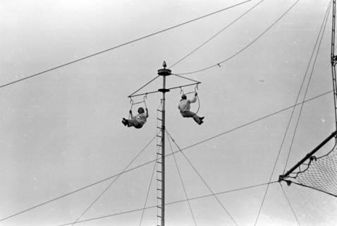 ARH NL Dierssen 0176/0027, Camilla Mayer-Hochseiltruppe, 1949