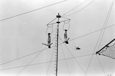 ARH NL Dierssen 0176/0028, Camilla Mayer-Hochseiltruppe, 1949