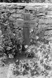 ARH NL Dierssen 0182/0015, Russische Kriegsgräber, 1949