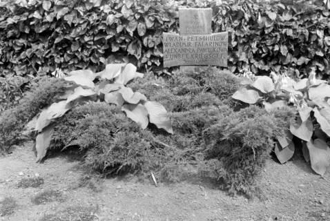 ARH NL Dierssen 0182/0018, Russische Kriegsgräber, 1949