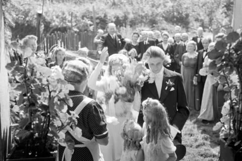 ARH NL Dierssen 0184/0005, Hochzeit Köster, 1949