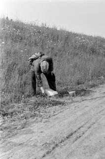ARH NL Dierssen 0185/0008, Kilometer-Stein-Anstreicher, 1949