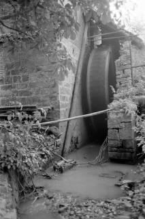 ARH NL Dierssen 0185/0014, Wasserrad, 1949