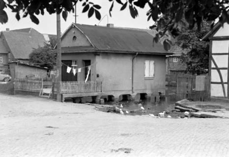 ARH NL Dierssen 0185/0015, Dorfteich, 1949