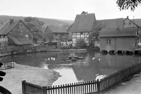 ARH NL Dierssen 0185/0017, Dorfteich, 1949