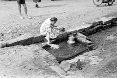 ARH NL Dierssen 0185/0018, Milchkannne in der Hamel, 1949