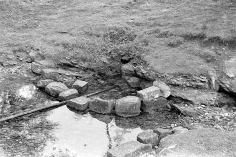 ARH NL Dierssen 0185/0019, Quelle der Hamel, 1949