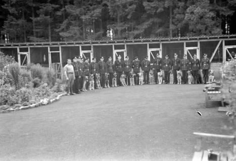 ARH NL Dierssen 0185/0021, Hundeschule, 1949