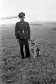 ARH NL Dierssen 0185/0023, Hundeschule, 1949