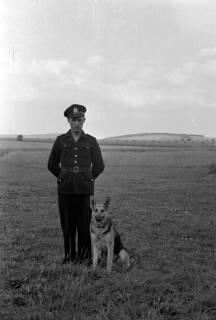 ARH NL Dierssen 0186/0001, Hundeschule, 1949