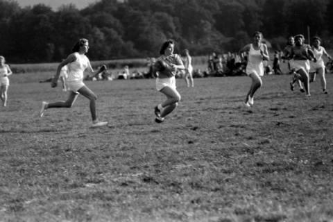 ARH NL Dierssen 0189/0011, Damen-Handball, 1949