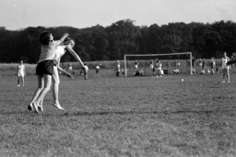 ARH NL Dierssen 0189/0016, Damen-Handball, 1949