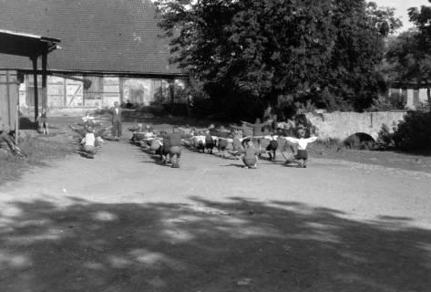 ARH NL Dierssen 0190/0005, Schauturnen, 1949