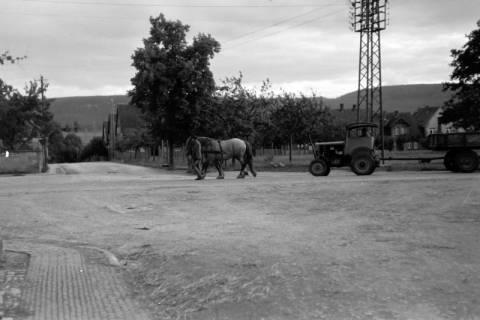 ARH NL Dierssen 0190/0012, Pferde schleppen Trecker ab, 1949