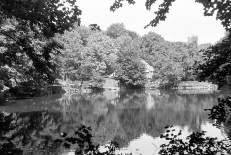 ARH NL Dierssen 0190/0015, Holzmühle, 1949