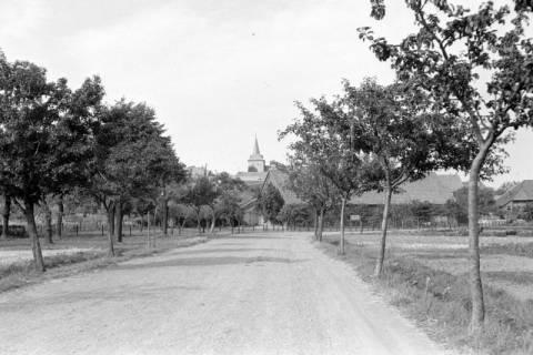 ARH NL Dierssen 0194/0010, Blick auf Alferde, 1949