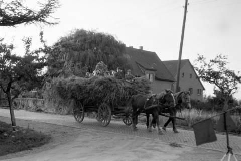 ARH NL Dierssen 0194/0013, Erntefest, 1949
