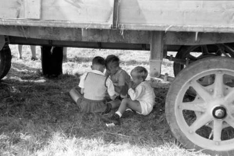 ARH NL Dierssen 0196/0009, Reittunier, 1949