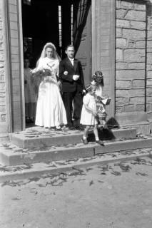 ARH NL Dierssen 0197/0018, Hochzeit Wittkopp, 1949