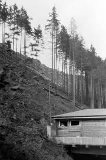 ARH NL Dierssen 0200/0015, Polizei-Ausflug, 1949