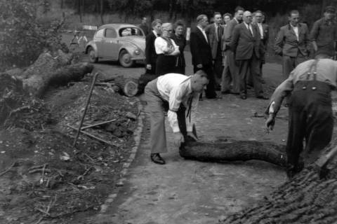ARH NL Dierssen 0200/0019, Polizei-Ausflug, 1949