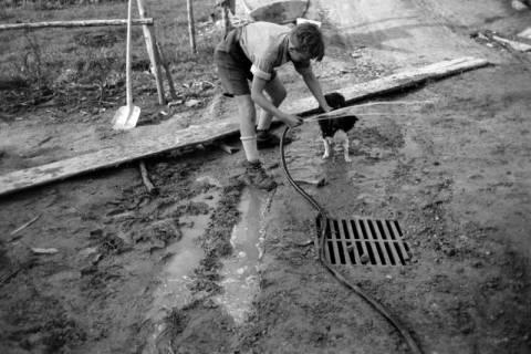 ARH NL Dierssen 0202/0021, Selbsthilfe-Baugemeinschaft, 1949