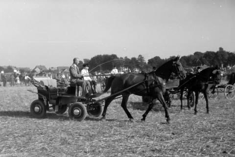 ARH NL Dierssen 0203/0003, Reiterfest, 1949