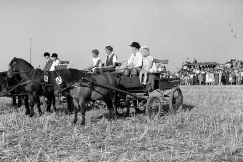 ARH NL Dierssen 0203/0008, Reiterfest, 1949