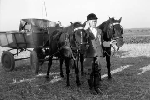 ARH NL Dierssen 0203/0013, Reiterfest, 1949
