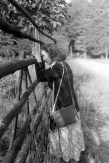 ARH NL Dierssen 0208/0011, ED im Saupark, 1949